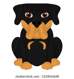 Isolated cute rottweiler cartoon. Dog breeds - Vector