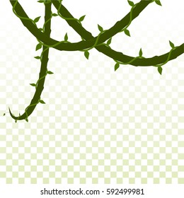isolated dangling creepers. on a transparent background. vector illustration.