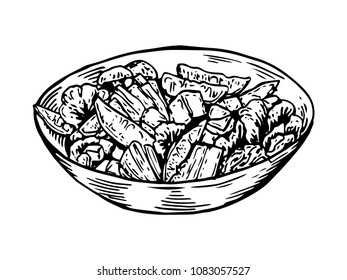 Isolated Detail Vintage Hand Drawn Salad Bowl Illustration