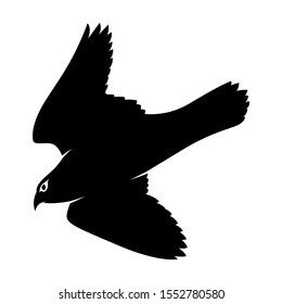 Isolated Falcon Bird Vector. Silhouette Eagle on White Background. Hawk Cutout