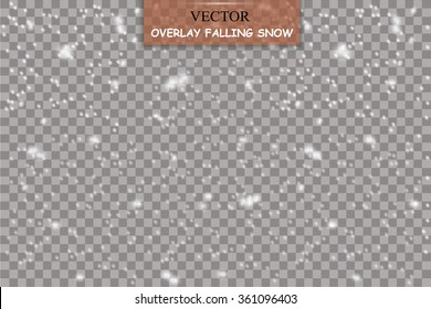 Isolated Falling Snow Overlay