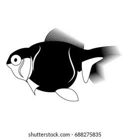 Isolated fish silhouette on a white background, vector illustration