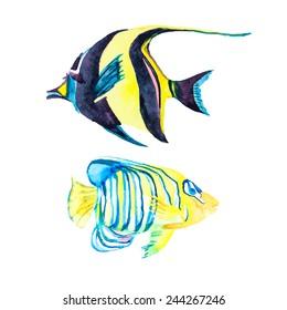 Ilustraciones Imagenes Y Vectores De Stock Sobre Fish Drawing