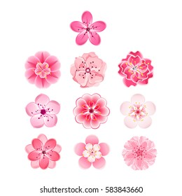 cherry blossom cartoon images stock photos vectors shutterstock rh shutterstock com cherry blossom cartoon wallpaper cherry blossom cartoon pic
