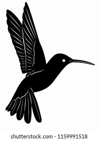 isolated hummingbird illustration, black and white drawing, white background