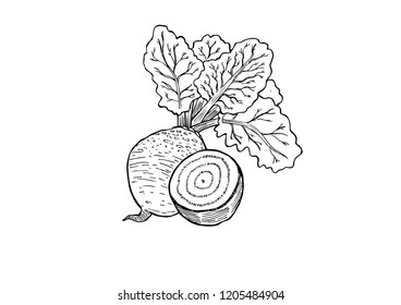 An isolated illustration of a beetroot in linear black and white style