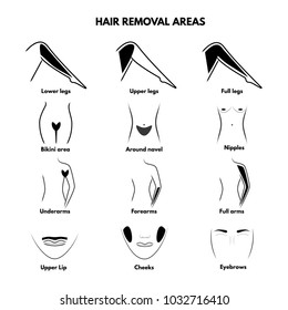 Isolated illustrations of hair removal areas. Legs, arms, bikini, face. Areas for laser epilation, waxing and sugaring depilation.