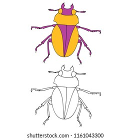 isolated, insect beetle, coloring book