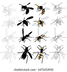 isolated, insect, wasp, bee set with sketch and silhouette