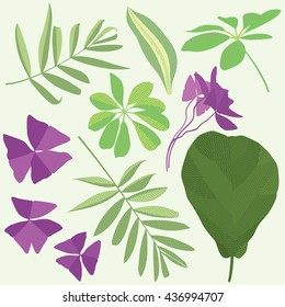 Isolated leaves of potted flowering plants, flat illustration, set of leaves
