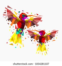 Isolated Low poly colorful couple hummingbird with white back ground,animal geometric,vector.