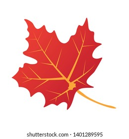 Isolated maple leave.Maple leaves in autumn. Vector EPS 10.