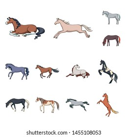 Isolated object of animal and stallion sign. Set of animal and farm vector icon for stock.