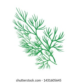Isolated object of dill and greenery icon. Set of dill and aromatherapy stock symbol for web.