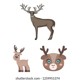Isolated object of elk and head icon. Collection of elk and stag stock vector illustration.
