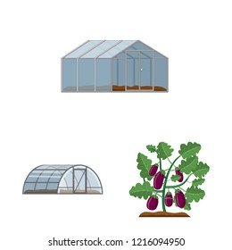 Isolated object of greenhouse and plant logo. Set of greenhouse and garden stock vector illustration.