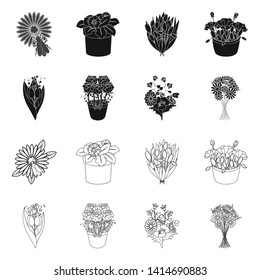 Isolated object of spring and wreath icon. Set of spring and blossom stock symbol for web.