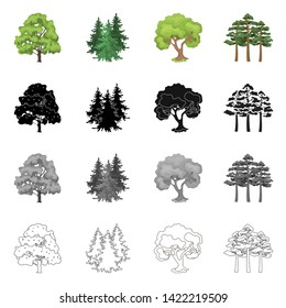 Isolated object of tree  and forest symbol. Set of tree  and green stock vector illustration.