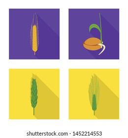 Isolated object of wheat and corn icon. Set of wheat and harvest vector icon for stock.