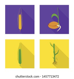 Isolated object of wheat and corn symbol. Collection of wheat and harvest vector icon for stock.