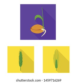 Isolated object of wheat and corn symbol. Set of wheat and harvest vector icon for stock.