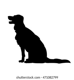 isolated on a white background,the silhouette of a dog sitting