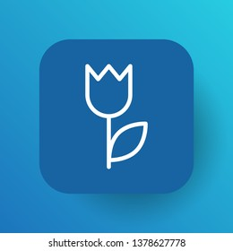 Isolated perishable icon line symbol on clean background. Vector flower element in trendy style.