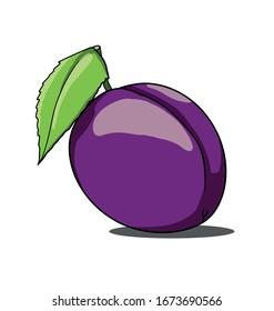 Isolated plum on white background