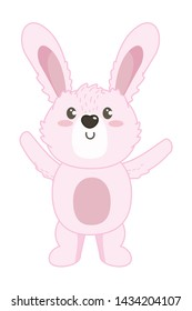 Isolated rabbit cartoon design vector illustrator