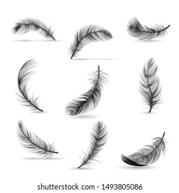 Isolated and realistic feather black icon set feather slowly falling down on white background vector illustration
