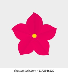 Isolated realistic flower with five red petals on white background.  Realistic style for banner, poster, promotion, web site, online shopping, advertising.