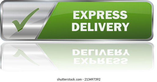 isolated realistic modern green 3D vector eps10 express delivery label sign
