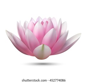 isolated realistic vector pink lotus flower  with shadow on a white background