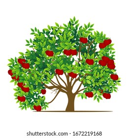 isolated red apple tree on a white background, vector illustration