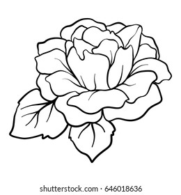 Isolated rose. Outline drawing. Stock line vector illustration.