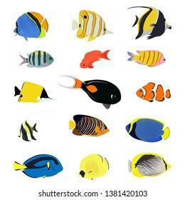Isolated sea fish. Set of aquarium cartoon fishes. varieties of ornamental popular color fish. Flat design fish. Vector illustration, fishes. Fish collection. Aquarium modern flat fishes.