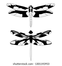 isolated, set of dragonfly silhouette black white
