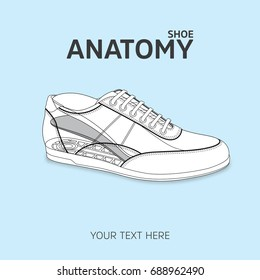 Isolated Shoe sketch and anatomy of shoe