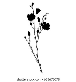 Isolated silhouette of a flax plant
