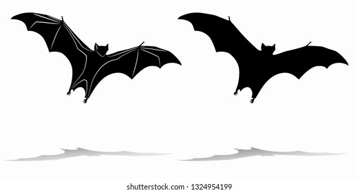 isolated silhouette of a flying bat, black and white drawing, white background