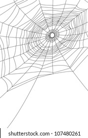 isolated spider web or cobweb background for halloween.