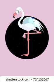 Isolated Stork Vector Illustration