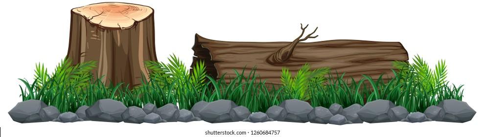 Isolated tree stump on white background illustration