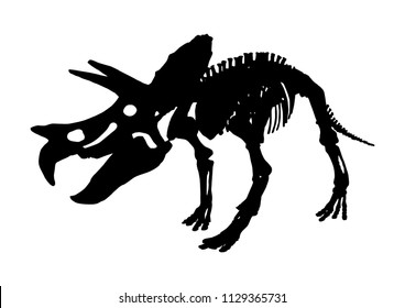 isolated Triceratops dinosaur skeleton fossil, vector illustration on white background