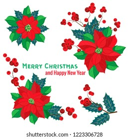 Isolated vector composition of poinsettia and holly on a transparent background