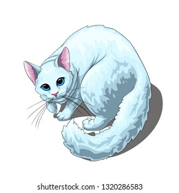 Isolated vector of cute fluffy unpleased white cat, painted in a realistic style.