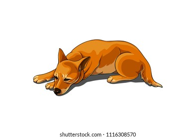 Isolated vector illustration of a realistic sad brown dog.