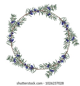 Isolated vector illustration, Round floral frame made of juniper branches.