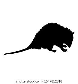 Isolated vector illustration. Silhouette of North American opossum or a rat. Virginia opossum. (Didelphis virginiana).
