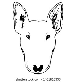 Isolated vector illustration. Stylized head of a Bull Terrier dog. Hand drawn linear doodle sketch. Black silhouette on white background.